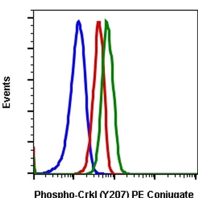 Phospho-CrkL (Tyr207) Rabbit anti-Human, Mouse, PE, Invitrogen 100 tests;