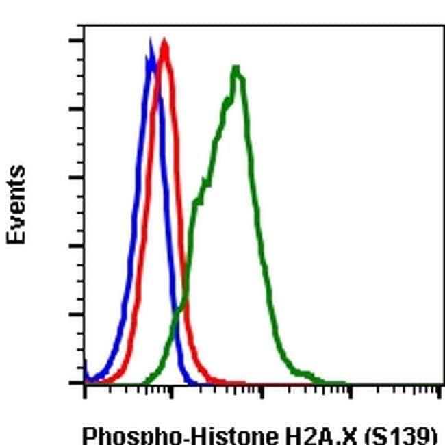 Phospho-Histone H2A.X (Ser139) Rabbit anti-Human, Mouse, Invitrogen 200