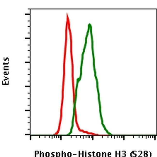 Phospho-Histone H3 (Ser28) Rabbit anti-Human, Mouse, PE, Invitrogen 100