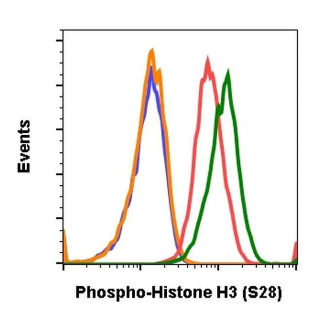 Phospho-Histone H3 (Ser28) Rabbit anti-Human, Mouse, Invitrogen 200 µL;
