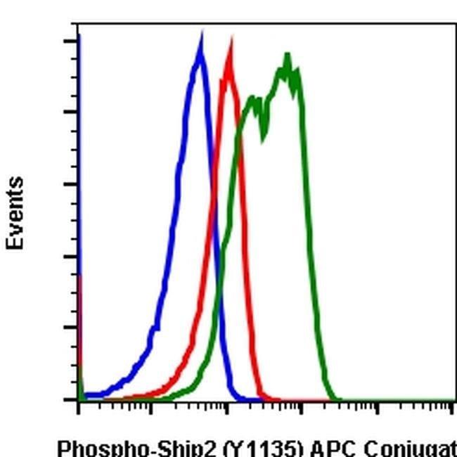 Phospho-SHIP2 (Tyr1135) Rabbit anti-Human, Mouse, APC, Invitrogen 100 tests;