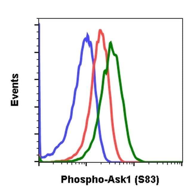 Phospho-ASK1 (Ser83) Rabbit anti-Human, Mouse, Rat, Invitrogen 200 µL;