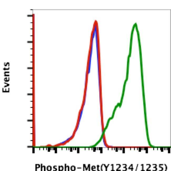 Phospho-c-Met (Tyr1234, Tyr1235) Rabbit anti-Human, Mouse, Invitrogen 200