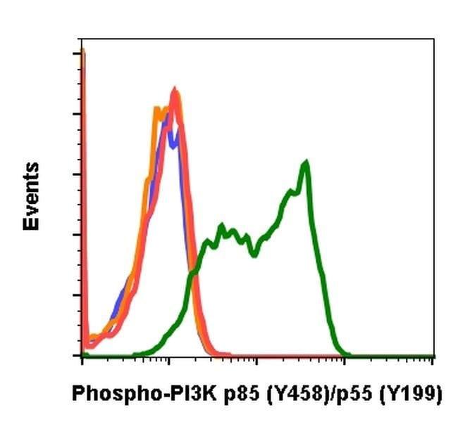 Phospho-PI3K p85/p55 (Tyr458, Tyr199) Rabbit anti-Human, Mouse, Invitrogen
