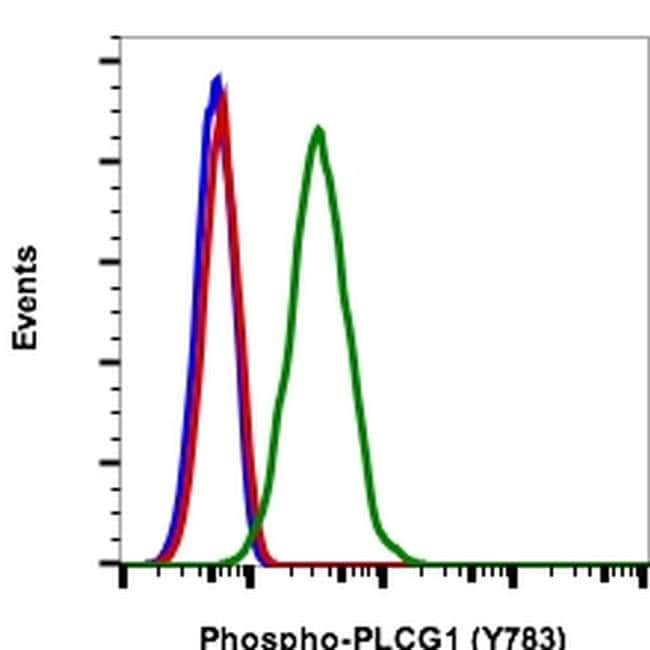 Phospho-PLCG1 (Tyr783) Rabbit anti-Human, Mouse, FITC, Invitrogen 100 tests;