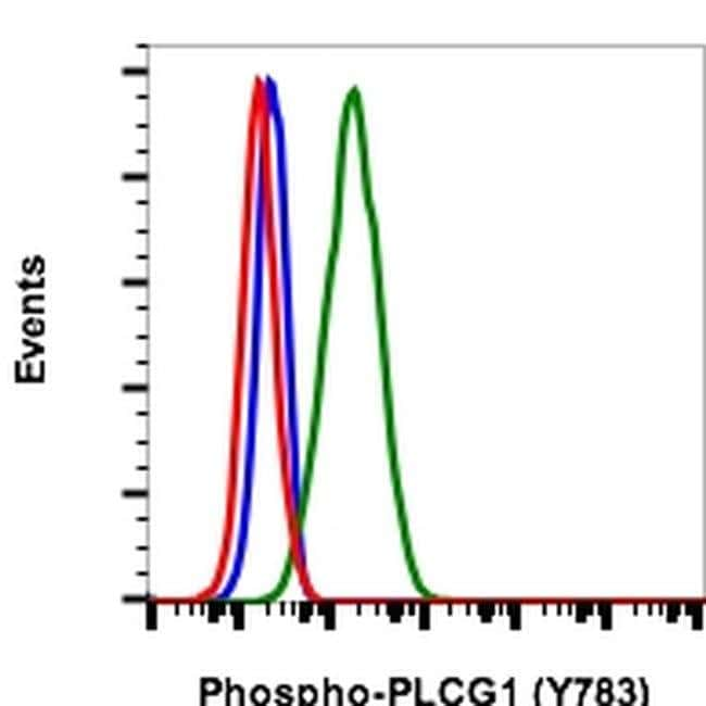 Phospho-PLCG1 (Tyr783) Rabbit anti-Human, Mouse, PE, Invitrogen 100 tests;