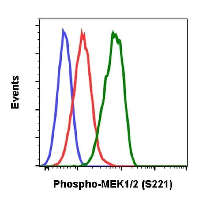 Phospho-MEK1/MEK2 (Ser221) Rabbit anti-Human, Mouse, Invitrogen 200 µL;