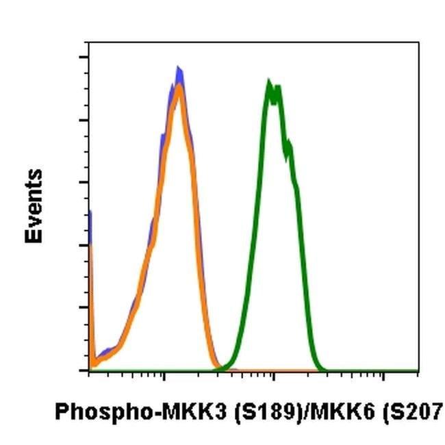 Phospho-MEK3/MEK6 (Ser189, Ser207) Rabbit anti-Human, Mouse, Invitrogen