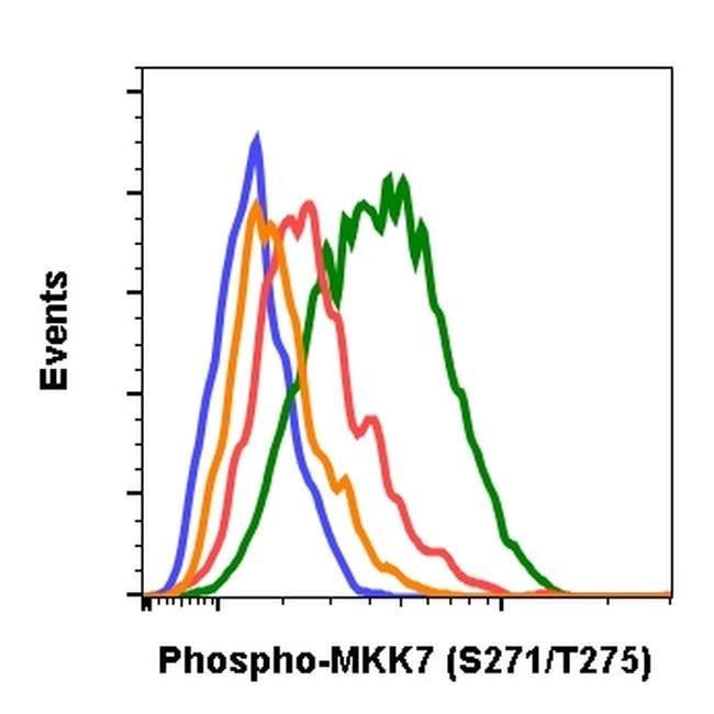 Phospho-MKK7 (Thr275, Ser271) Rabbit anti-Human, Mouse, Rat, Invitrogen