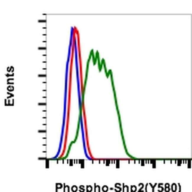 Phospho-SHP2 (Tyr580) Rabbit anti-Human, Mouse, Invitrogen 200 µL;