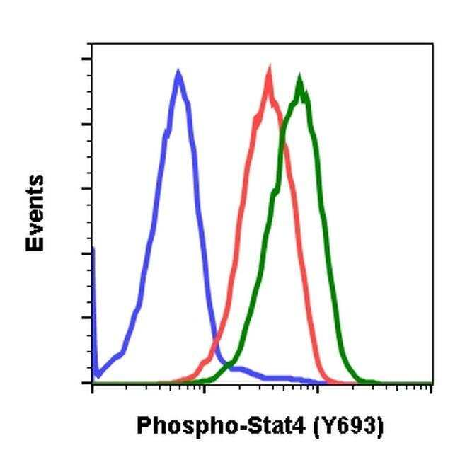 Phospho-STAT4 (Tyr693) Rabbit anti-Human, Mouse, Invitrogen 200 µL;