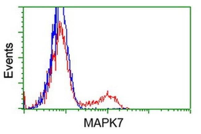 MAPK7 Mouse anti-Human, Clone: OTI4F9, liquid, TrueMAB  100 µL; Unconjugated