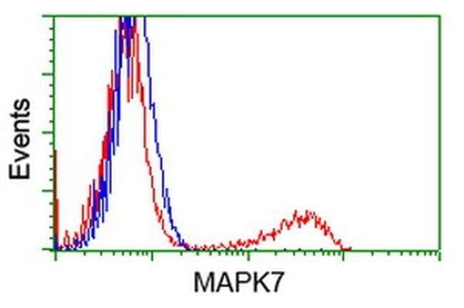 MAPK7 Mouse anti-Human, Clone: OTI1A4, liquid, TrueMAB  100 µL; Unconjugated