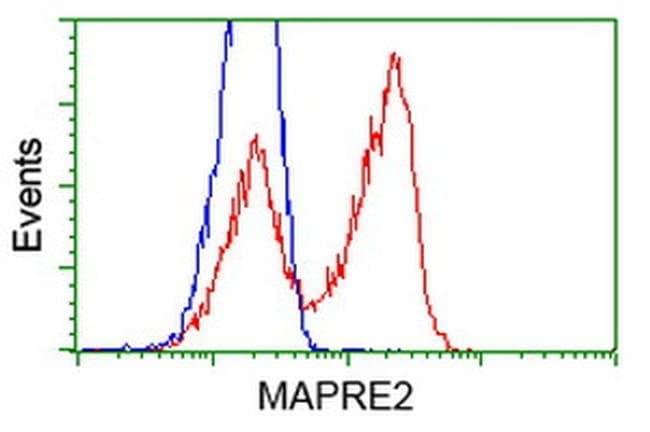MAPRE2 Mouse anti-Human, Clone: OTI1D10, liquid, TrueMAB  100 µL;