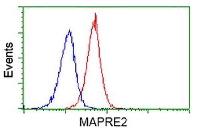 MAPRE2 Mouse anti-Human, Clone: OTI3C4, liquid, TrueMAB  100 µL; Unconjugated