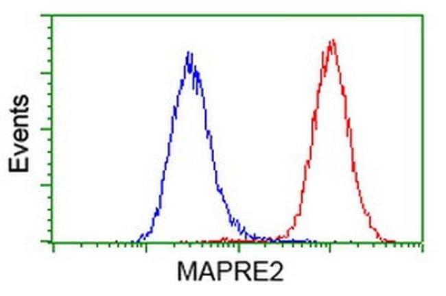 MAPRE2 Mouse anti-Human, Clone: OTI5F3, liquid, TrueMAB  100 µL; Unconjugated
