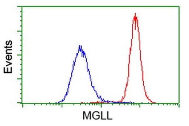 MGLL Mouse anti-Human, Clone: OTI1H1, liquid, TrueMAB  100 µL; Unconjugated