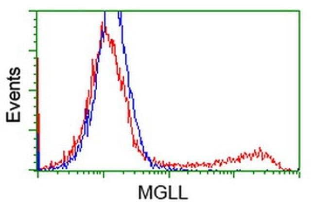 MGLL Mouse anti-Human, Clone: OTI 2B6, liquid, TrueMAB  100 µL; Unconjugated
