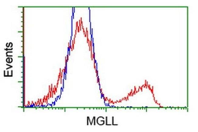 MGLL Mouse anti-Human, Clone: OTI4D1, liquid, TrueMAB  100 µL; Unconjugated