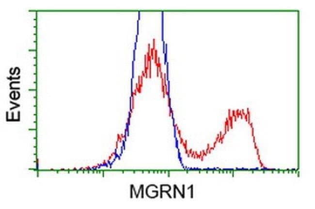 MGRN1 Mouse anti-Human, Clone: OTI3C3, liquid, TrueMAB  100 µL; Unconjugated