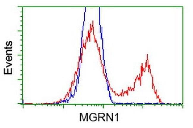 MGRN1 Mouse anti-Human, Clone: OTI2A7, liquid, TrueMAB  100 µL; Unconjugated