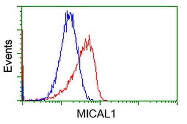 MICAL1 Mouse anti-Human, Clone: OTI1C2, liquid, TrueMAB  100 µL; Unconjugated
