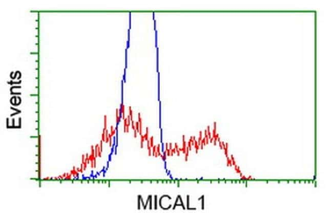 MICAL1 Mouse anti-Human, Clone: OTI6H10, liquid, TrueMAB  100 µL;