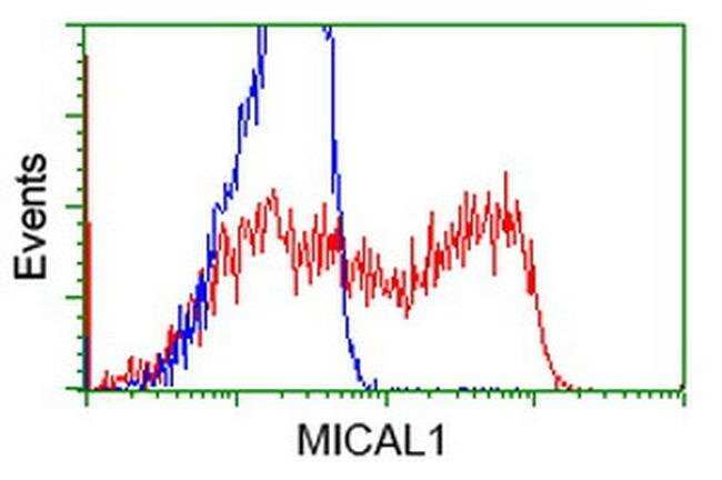 MICAL1 Mouse anti-Human, Clone: OTI2H1, liquid, TrueMAB  30 µL; Unconjugated