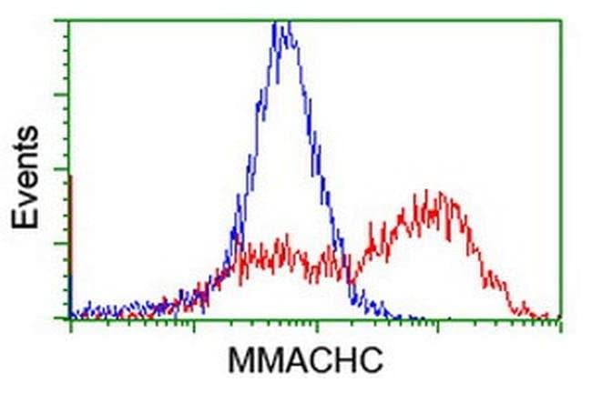MMACHC Mouse anti-Human, Clone: OTI1B7, liquid, TrueMAB  100 µL; Unconjugated