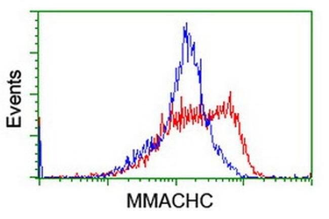 MMACHC Mouse anti-Human, Clone: OTI6B5, liquid, TrueMAB  100 µL; Unconjugated