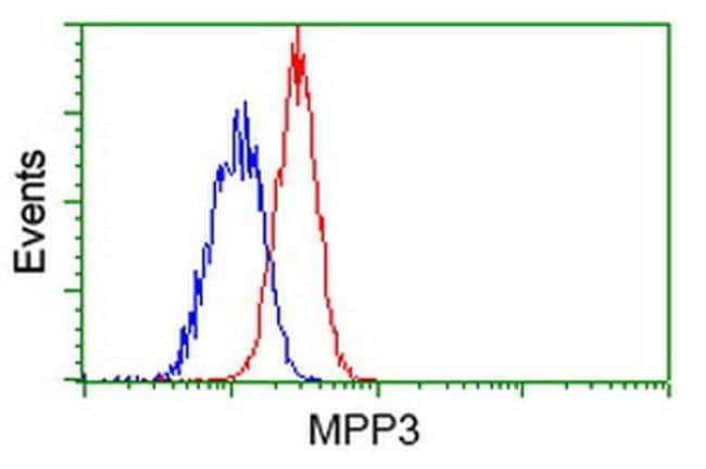 MPP3 Mouse anti-Human, Clone: OTI8F1, liquid, TrueMAB  100 µL; Unconjugated