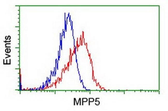 MPP5 Mouse anti-Canine, Human, Rat, Clone: OTI2D3, liquid, TrueMAB  100
