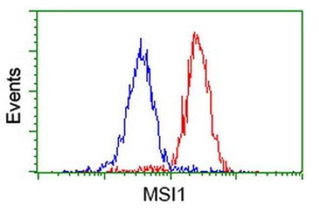 MSI1 Mouse anti-Human, Clone: OTI1G8, liquid, TrueMAB  100 µL; Unconjugated