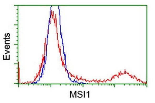 MSI1 Mouse anti-Human, Clone: OTI2A10, liquid, TrueMAB  100 µL; Unconjugated