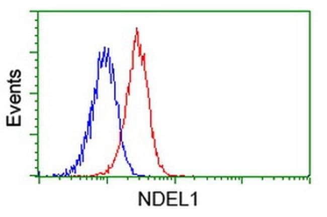 NDEL1 Mouse anti-Canine, Human, Rat, Clone: OTI1G10, liquid, TrueMAB  30