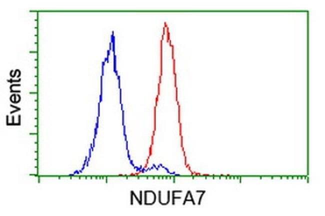 NDUFA7 Mouse anti-Human, Clone: OTI2F3, liquid, TrueMAB  100 µL; Unconjugated