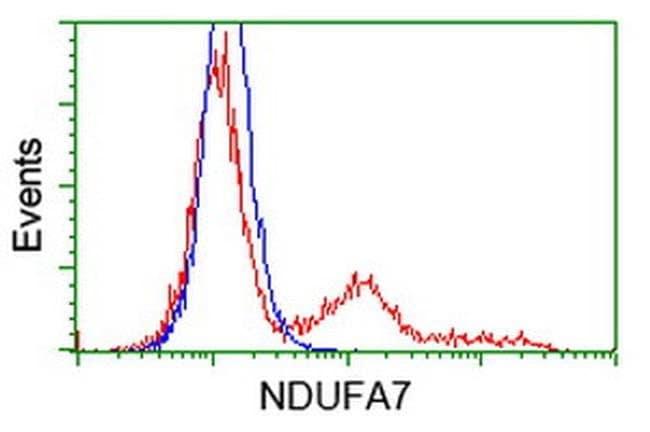 NDUFA7 Mouse anti-Human, Clone: OTI2E3, liquid, TrueMAB  100 µL; Unconjugated
