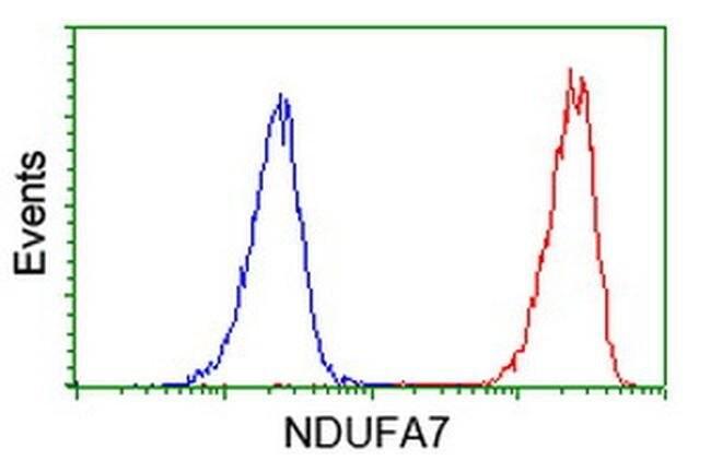 NDUFA7 Mouse anti-Human, Clone: OTI2E4, liquid, TrueMAB  100 µL; Unconjugated