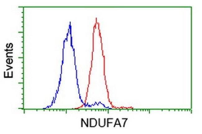NDUFA7 Mouse anti-Human, Clone: OTI2A4, liquid, TrueMAB  100 µL; Unconjugated