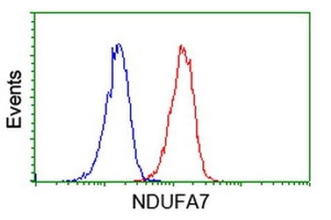 NDUFA7 Mouse anti-Human, Clone: OTI2C3, liquid, TrueMAB  100 µL; Unconjugated