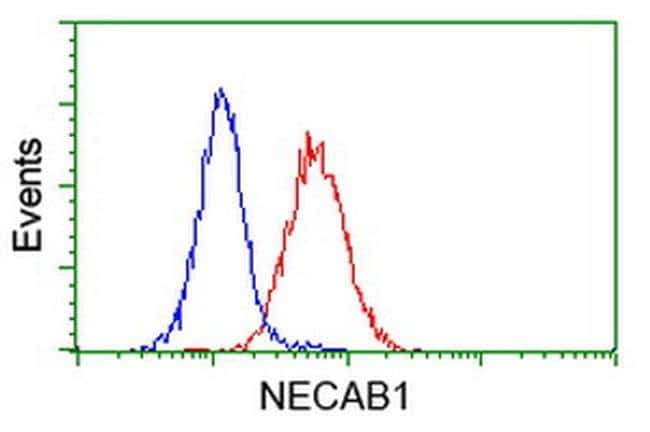 NECAB1 Mouse anti-Human, Clone: OTI4G8, liquid, TrueMAB  100 µL; Unconjugated