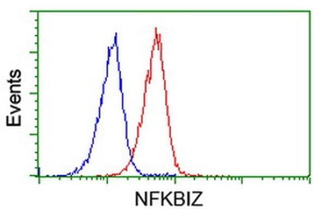 NFKBIZ Mouse anti-Human, Clone: OTI1E8, liquid, TrueMAB  30 µL; Unconjugated