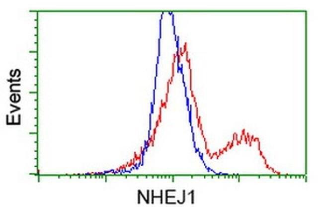 NHEJ1 Mouse anti-Human, Clone: OTI2C8, liquid, TrueMAB  100 µL; Unconjugated