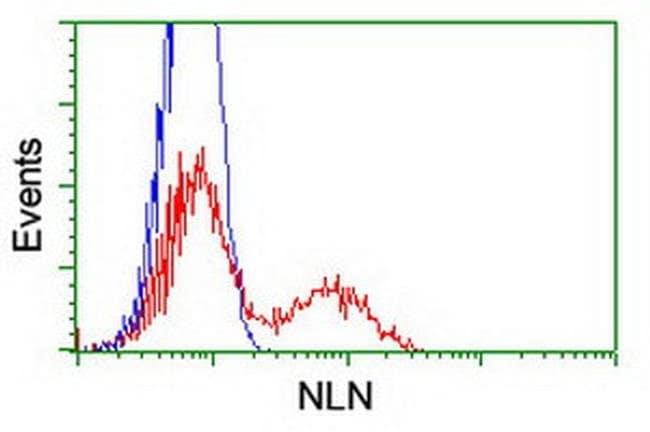 NLN Mouse anti-Human, Clone: OTI3C2, liquid, TrueMAB  100 µL; Unconjugated