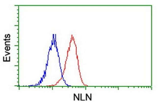 NLN Mouse anti-Human, Mouse, Rat, Clone: OTI1D6, liquid, TrueMAB  100 µL;
