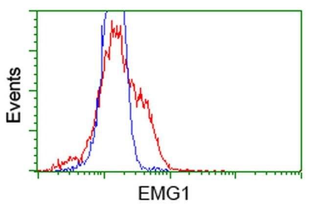 NME4 Mouse anti-Human, Clone: OTI4F10, liquid, TrueMAB  100 µL; Unconjugated