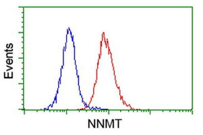 NNMT Mouse anti-Human, Clone: OTI2A3, liquid, TrueMAB  100 µL; Unconjugated