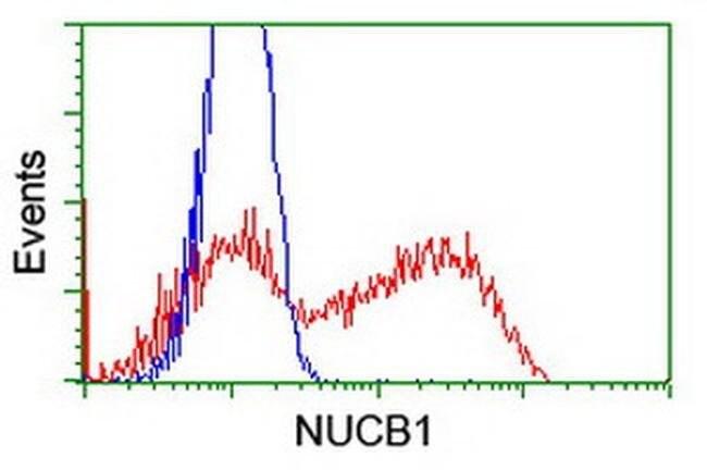 NUCB1 Mouse anti-Human, Clone: OTI1A5, liquid, TrueMAB  100 µL; Unconjugated