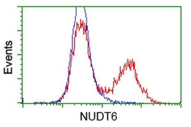 NUDT6 Mouse anti-Human, Clone: OTI10B4, liquid, TrueMAB  100 µL; Unconjugated