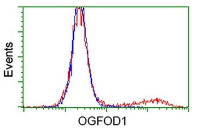 OGFOD1 Mouse anti-Human, Clone: OTI1G6, liquid, TrueMAB  100 µL; Unconjugated